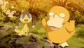 Psyduck Helioptile XY137.png