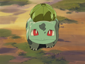 Forbidden Forest Bulbasaur.png