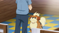 Growlithe PO.png