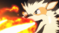 International Police Arcanine Flamethrower PG.png