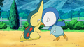 Piplup Cyndaquil rivalry.png