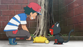 Ash and Litten.png