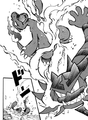 Cross Incineroar Fire Fang ICYR.png