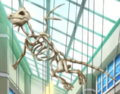 Dragonite Skeleton Anime.png