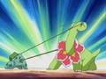 Meganium and Bulbasaur.png