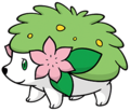 492Shaymin Land Forme Dream 2.png