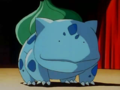 Duplica Ditto Bulbasaur.png