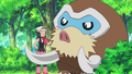 Dawn and Mamoswine.png