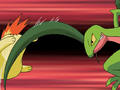 Ash Grovyle Pound.png