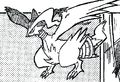 Fraud Reshiram.png
