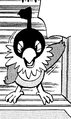 Chatot PMDP.png