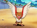 Punk Spearow.png
