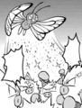 Ash Butterfree Sleep Powder M20 manga.png