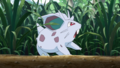 Youngster Nidoran PO.png
