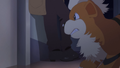 International Police Growlithe PG.png