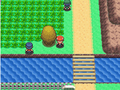 Sinnoh Route 205 Honey tree DP.png