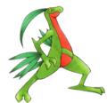 Grovyle BET.png