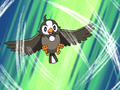 Ash Starly Gust.png