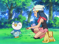 Dawn Piplup rejecting food.png