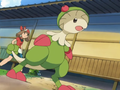 Fighting Dojo Breloom.png