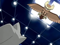 Mulberry City Noctowl.png
