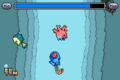 E Reader Diving Corsola.png