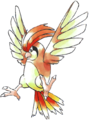 017Pidgeotto RB.png