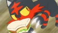 Ash Litten Fury Swipes.png