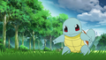 Blue Squirtle PO.png