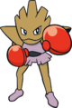 107Hitmonchan Dream.png