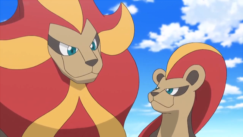 File:Pyroar gender difference anime.png