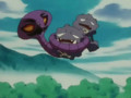 Duplica Ditto Transform Wrap.png