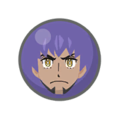 Pokémon Camp Champion Ball icon.png