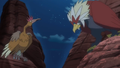 Clawmark Hill Fearow Braviary.png