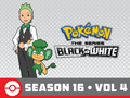 Pokémon BW S16 Vol 4 Amazon.png