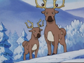 Snowtop Mountain Stantler.png