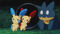 Plusle Minun Munchlax.png