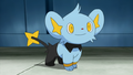 Clemont Shinx.png