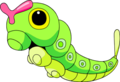 010Caterpie OS anime 2.png
