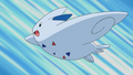 Dawn Togekiss.png