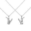U-Treasure Necklace Umbreon Silver.png