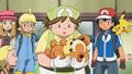 Pokémon Breeder Teddiursa.png