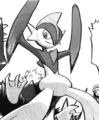 Darach Gallade Adventures.png