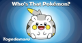 WTP Facebook-Twitter 14-01-17 Togedemaru.png