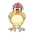 017Pidgeotto OS anime 2.png
