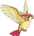 018Pidgeot AG anime.png