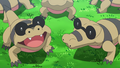 Aether Paradise Sandile.png