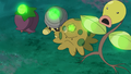 Cherrim Seedot Shroomish Bellsprout Growth glowing.png
